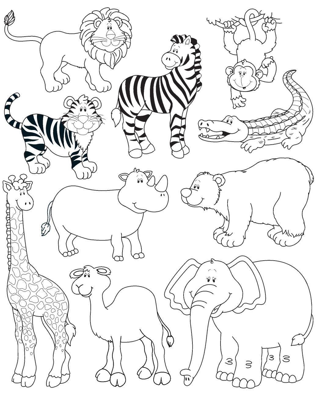 Dibujos Para Colorear De Animales Herbivoros Carnivoros Y