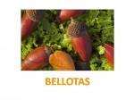 Bits: Frutas de Otoño