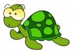 La técnica de la tortuga para el control de la hiperactividad