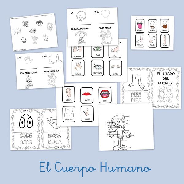 el cuerpo humano, fichas para imprimir, recursos para el maestro