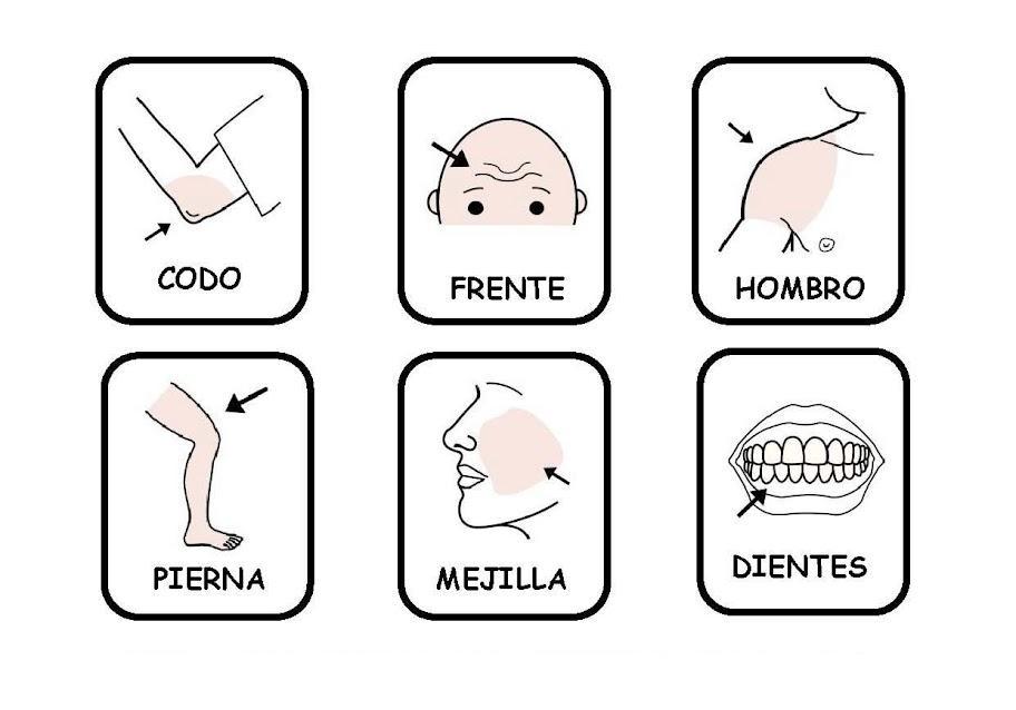 Só para relembrar...: Partes del cuerpo y verbo doler - ESPAÑOL
