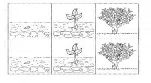 plantas, recursos educativos, flores, arboles, naturaleza