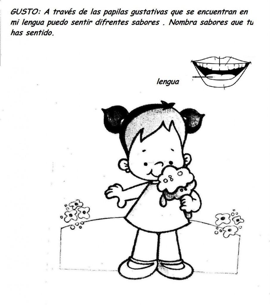 los cinco sentidos: vista,oido,gusto,tacto,olor