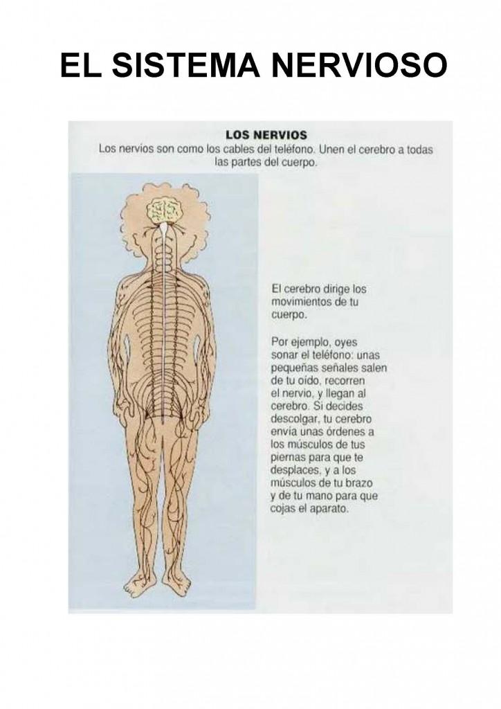 el cuerpo del delito libro pdf