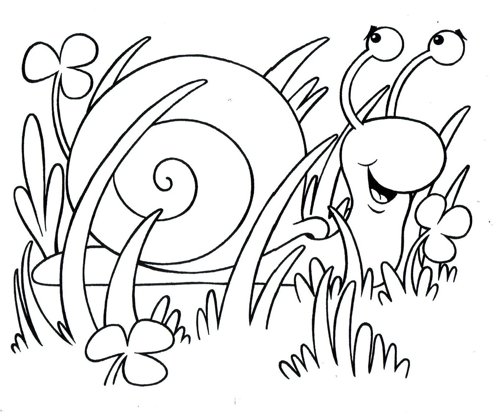 Dibujos Para Colorear Insectos En Primavera