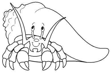 animales marinos05