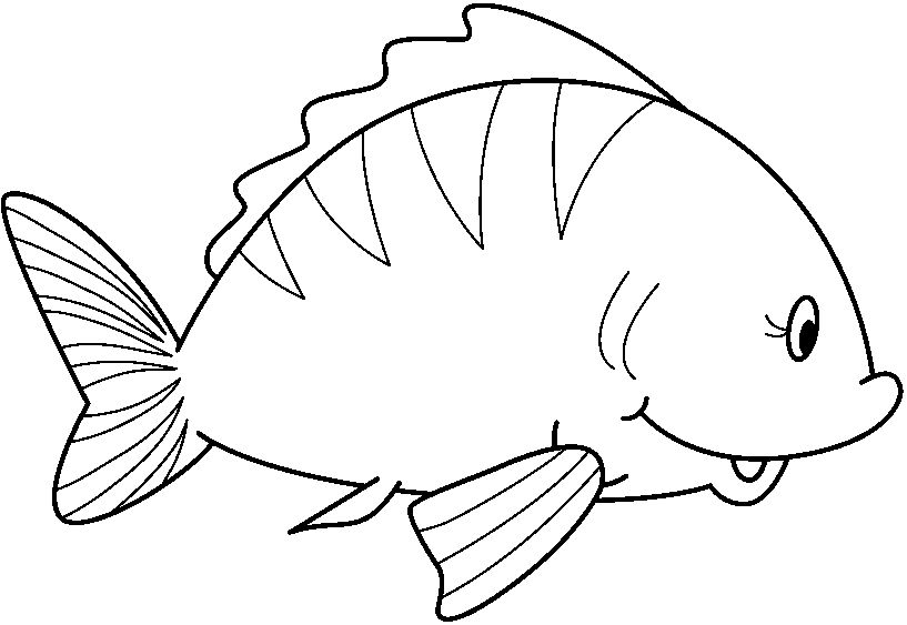 Animales del mar peruano para colorear - Imagui