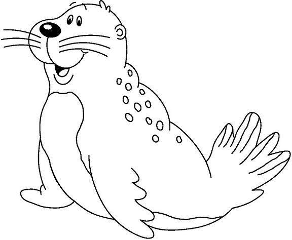 animales marinos36
