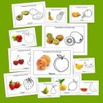 Frutas de Mayo