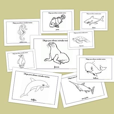 Dibujos para colorear: Animales marinos