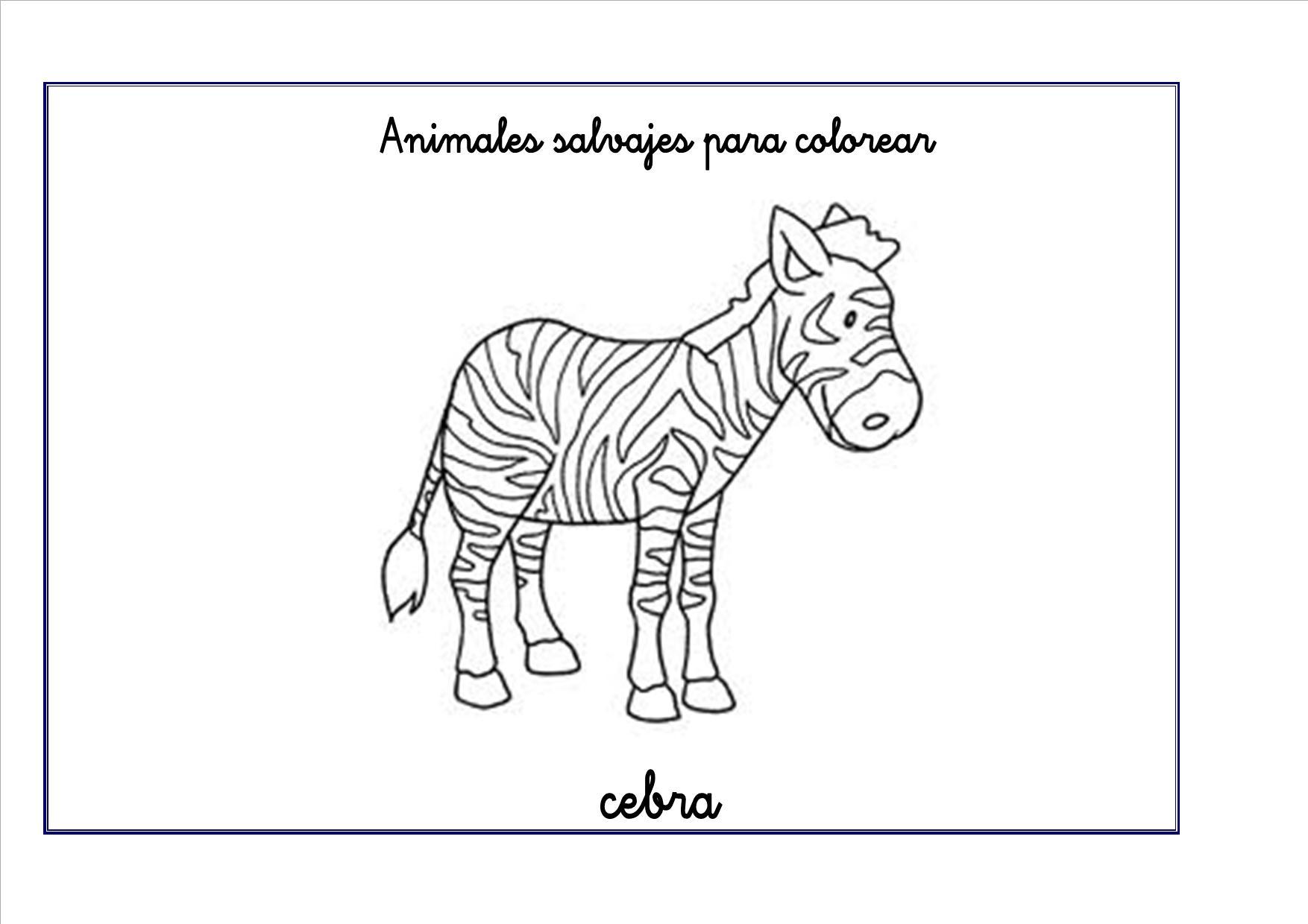 Famoso Páginas Para Colorear De Cebras Foto - Enmarcado Para ...