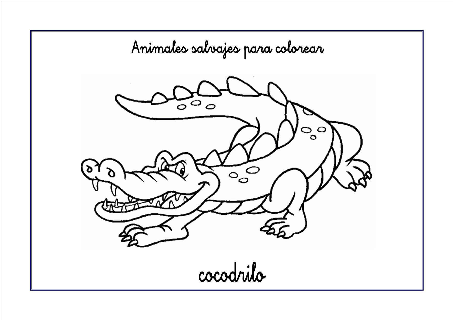 Plantilla dibujo cocodrilo - Imagui