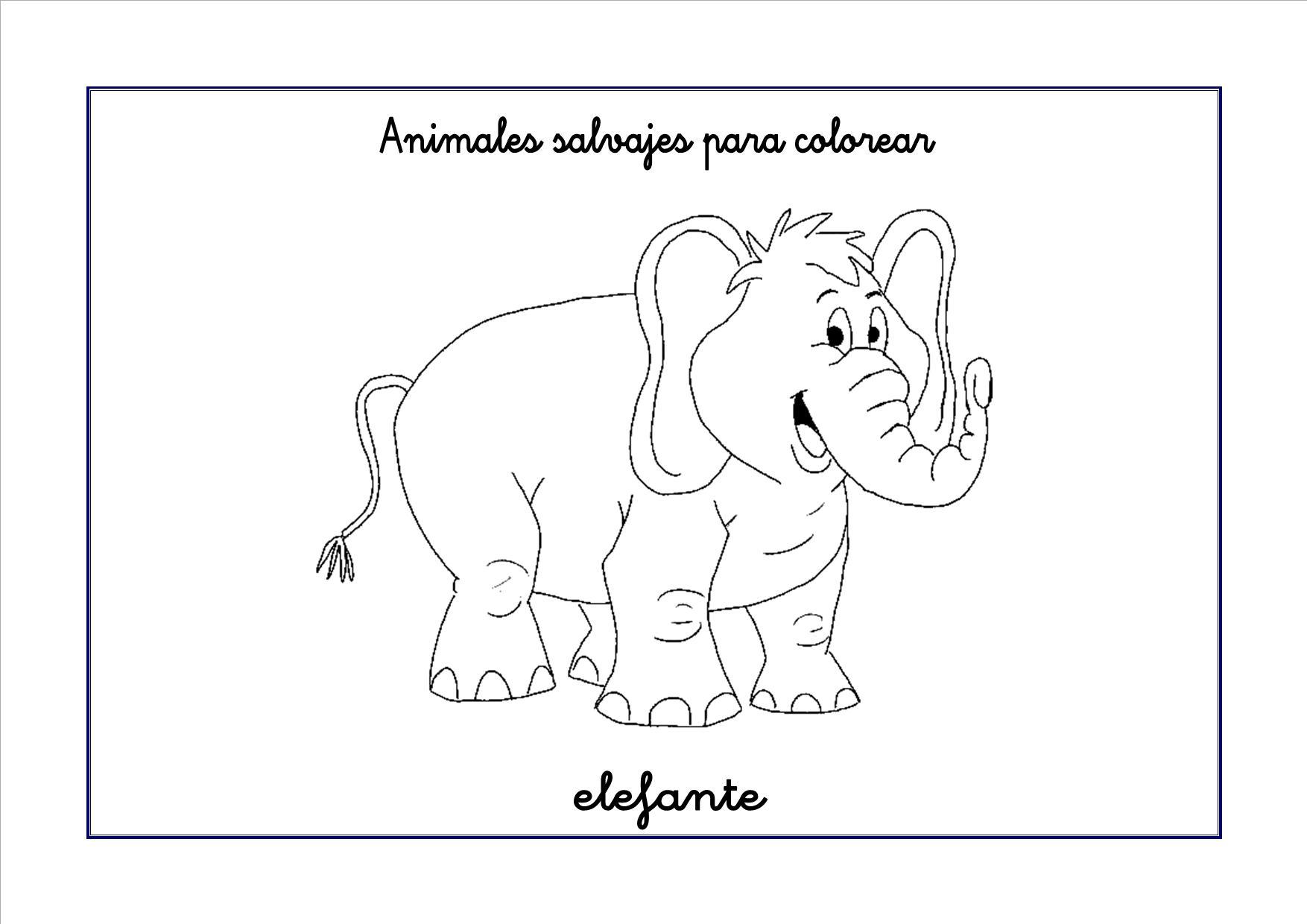 Dibujos de animales salvajes para colorear | Escuela en la nube