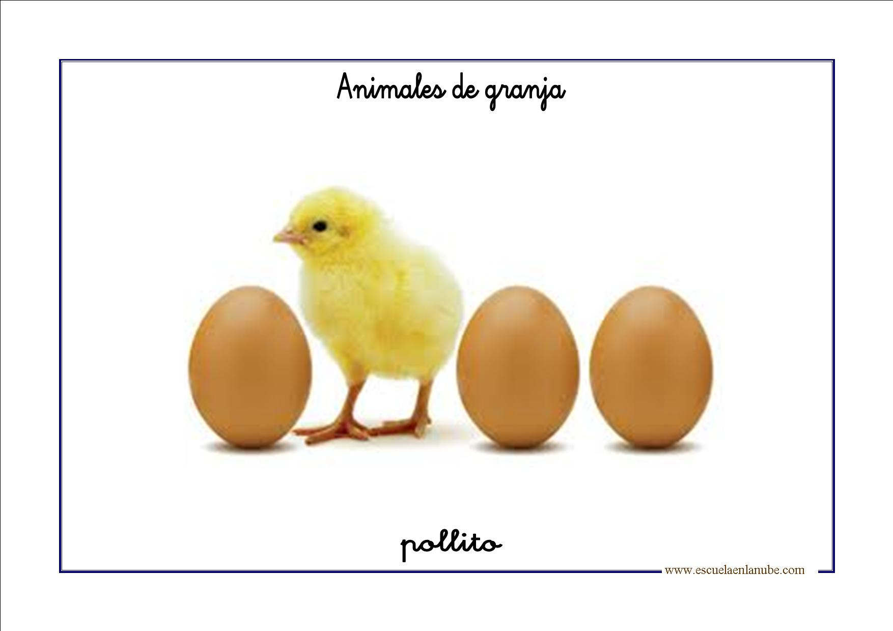 Fichas de infantil: Vocabulario básico con animales de granja