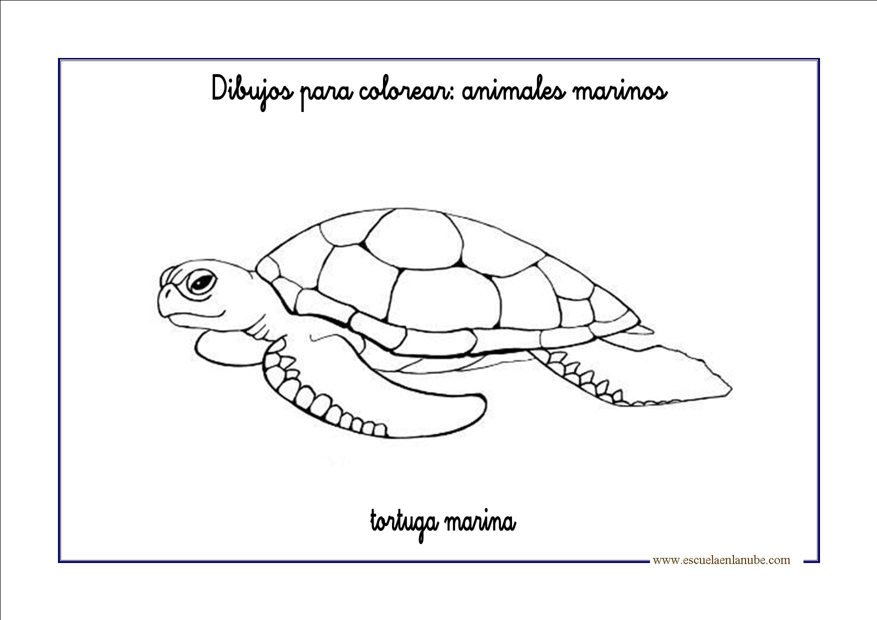 DEibujos para colorear: Animales marinos