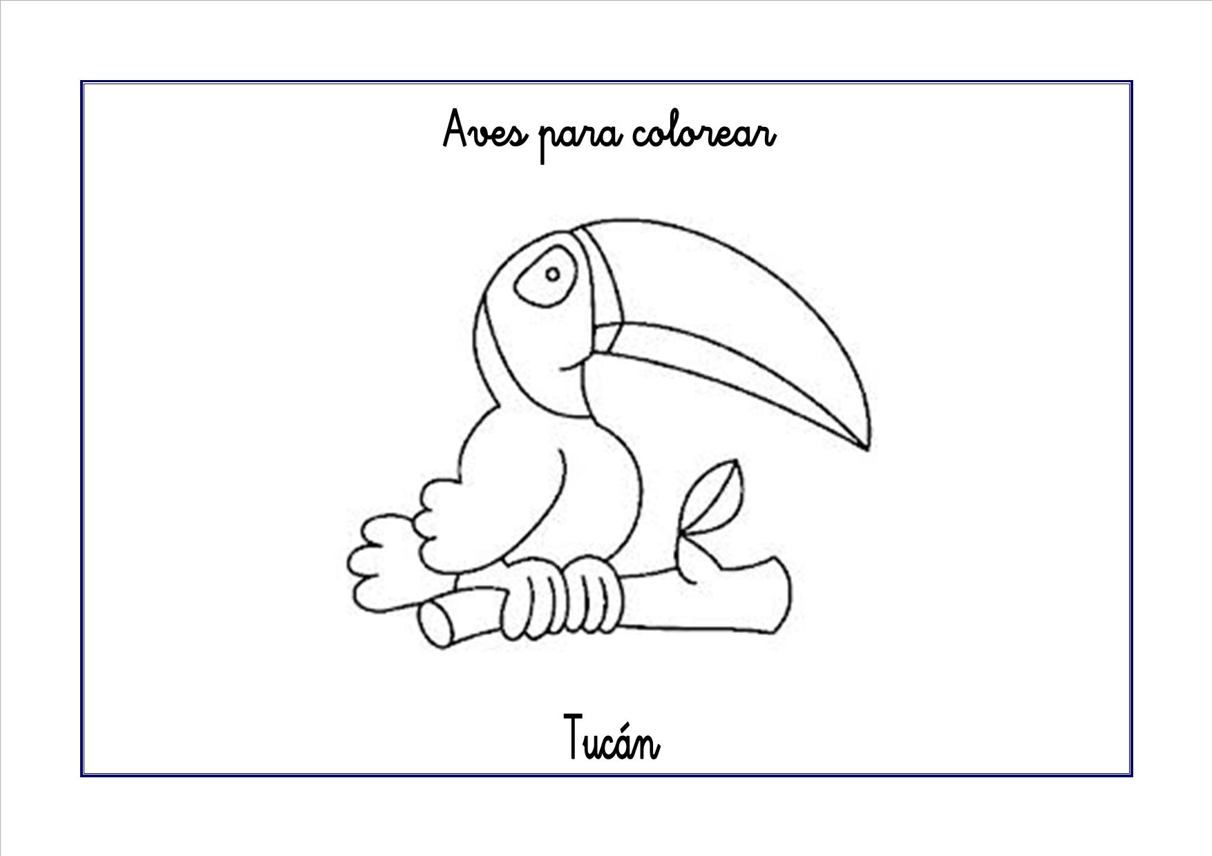 Asombroso Páginas Para Colorear De Pájaros Para Niños Imprimibles ...