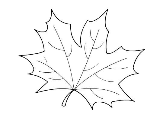 hojas de otoño para colorear - Tire.driveeasy.co