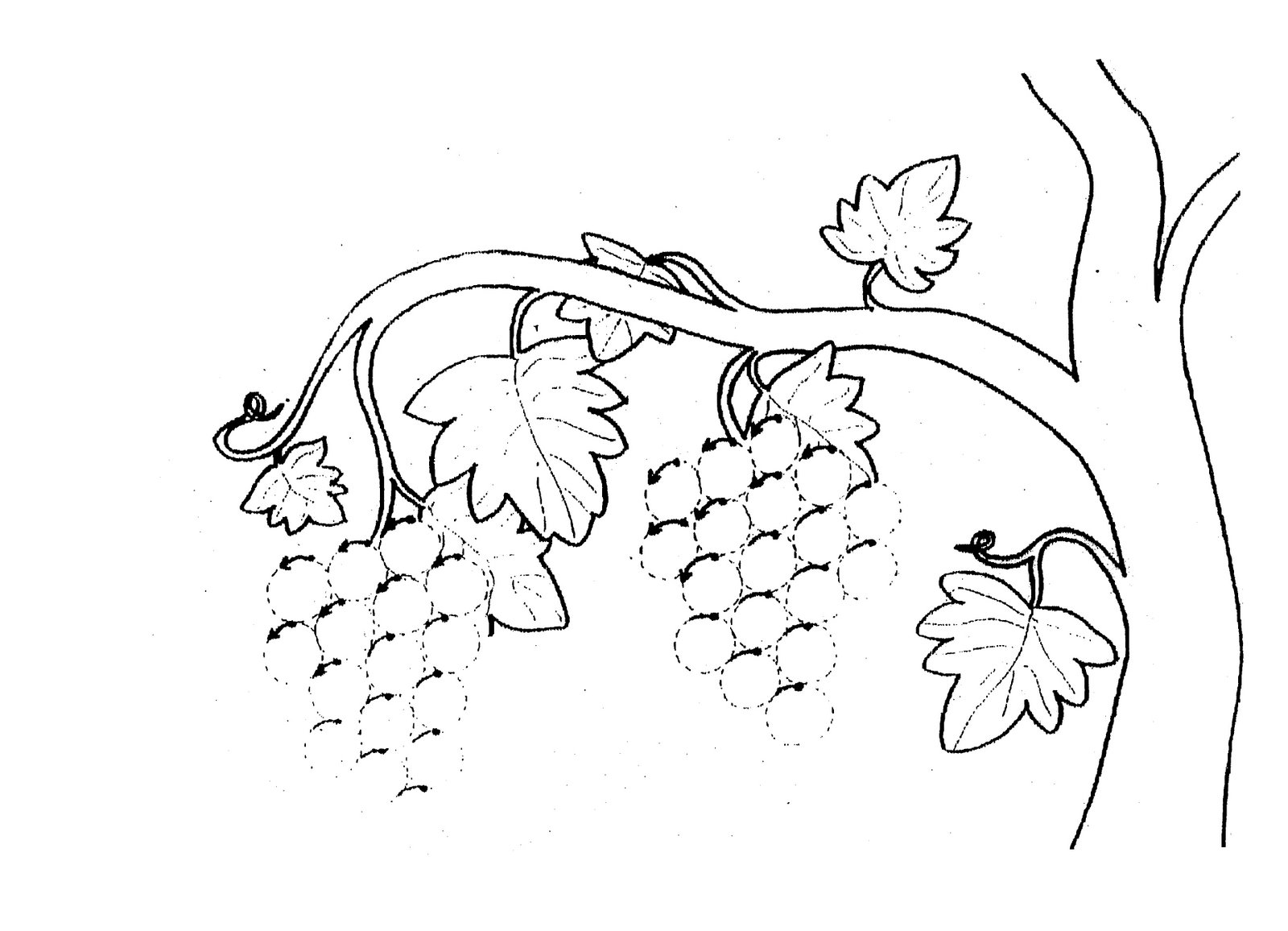 Dibujos para colorear en otoño