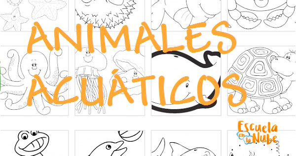 dibujos animales marinos para colorear