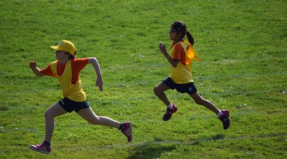 juego educativo deportes