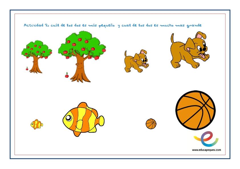 Conceptos Básicos De Posiciones Y Tamaños Relativos Para Niños
