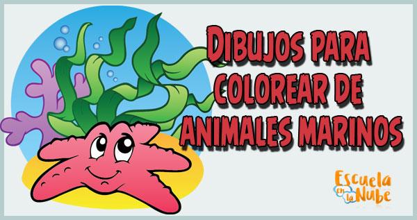 Dibujos Para Colorear De Animales Marinos Escuela En La Nube