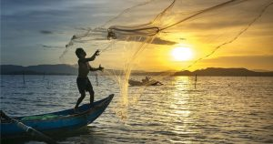 pesca artesanal e industrial